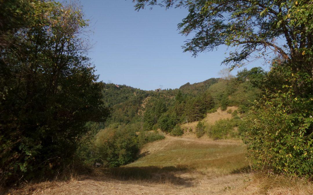Nell'Alta Valle dell'Idice