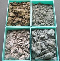 Argille scagliose, campioni al Museo Bombicci