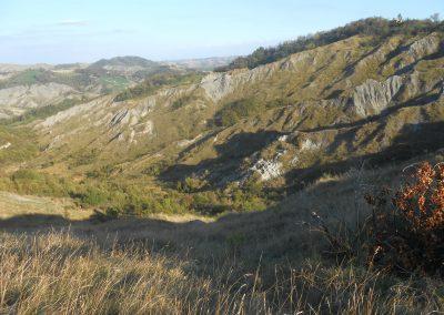 Argille scagliose come appaiono nei calanchi sopra Monterenzio