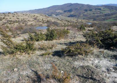 Argille scagliose come appaiono sul territorio verso il sasso della Mantesca