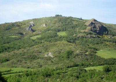 Argille Scagliose come appaiono nella media valle del Sillaro - Ofioliti di Sassonero