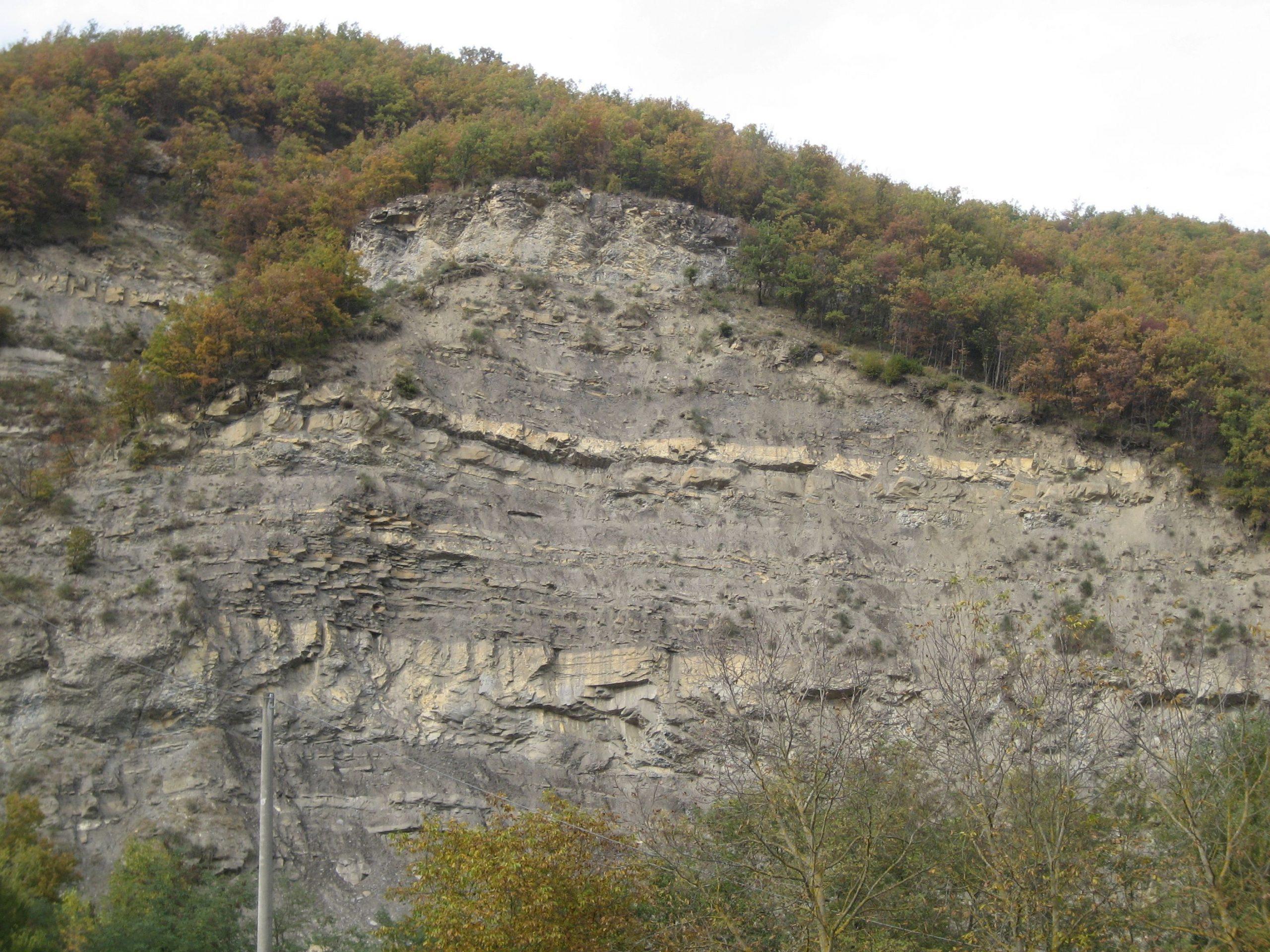 Strati del Flysch, fondovalle Savena, sopra il Mulino di Carlino