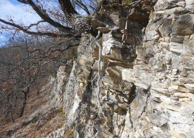 Cima di Monte Venere - strati del Flysch