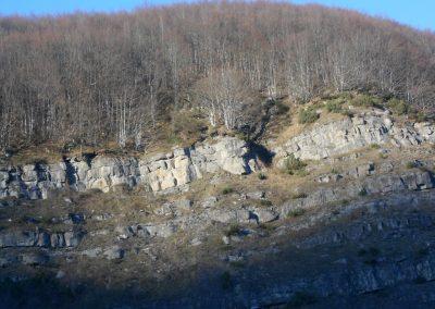 Particolare strati del Flysch di Monte Oggioli (dicembre 2014)